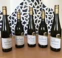 Fünfmal Gold bei der NÖ Weinprämierung 2021